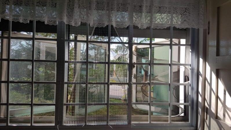 mosquito screen cat proofing mesh